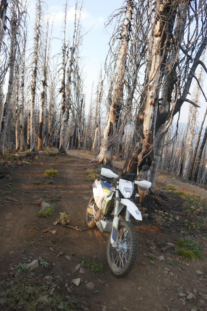 First adventure ride Husqvarna 701